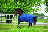 Rino Original Turnout Blanket from Horseware Ireland