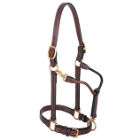 "Track Halter 1"" Horse by Weaver"