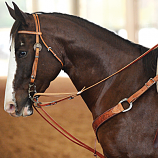 German Martingale by Martin Saddlery