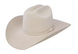 Shasta 10X Felt Hat by Stetson