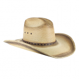 Jason Aldean Georgia Boy Palm Hat by Resistol
