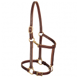 "Track Halter 3/4"" Horse by Weaver"