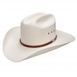 Alamosa Natural Straw Hat by Resistol