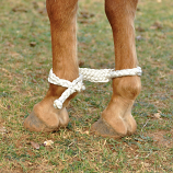 Mule Tape Hobbles by Martin Saddlery