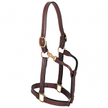 "ThoroughBred Halter with Snap 1-1/8"" Large Horse by Weaver"