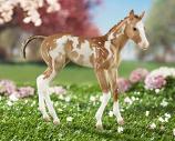 Camila Springtime Foal by Breyer